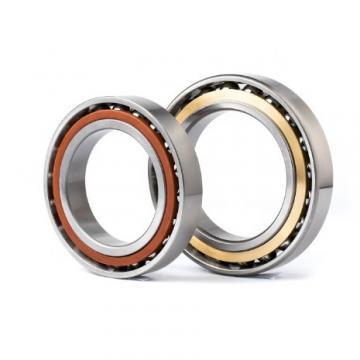 BUNTING BEARINGS BJ4S040602  Plain Bearings